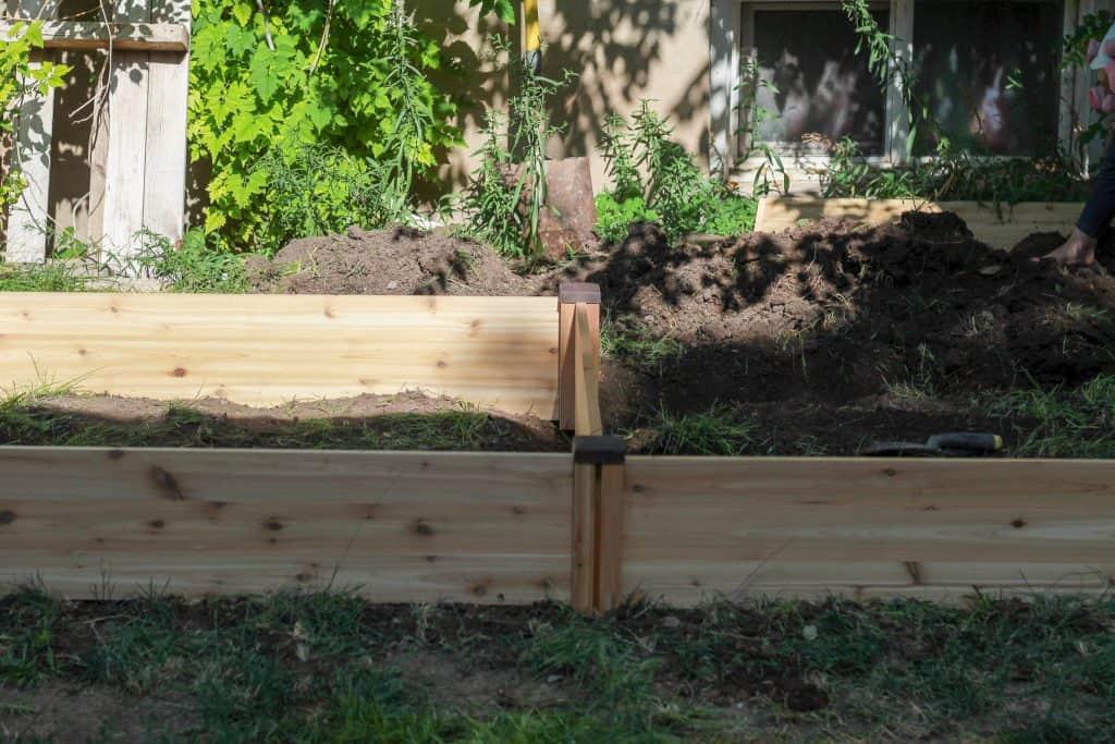 assembling cedar craft kit