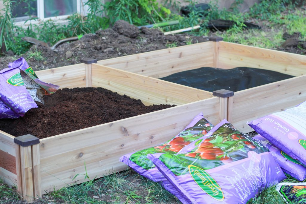 filling raised bed with soil
